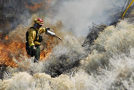 Controlled burn in Lockwood, Nevada.